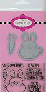 Bunny Pudgie