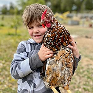 boy with chicken smiling