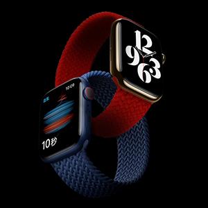 apple watch bands 44mm