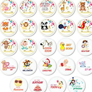 baby belly stickers baby month sticker baby month milestone baby monthly stickers girl