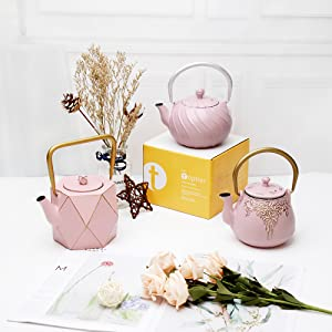 tea kettle cast iron teapot with infuser Japanese tetsubin teapot set whistling kettle for stove top