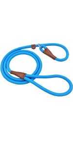 slip dog leash