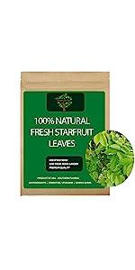 Fresh Starfruit Leaves, Starfruit
