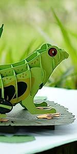 Frog Pop Up Card