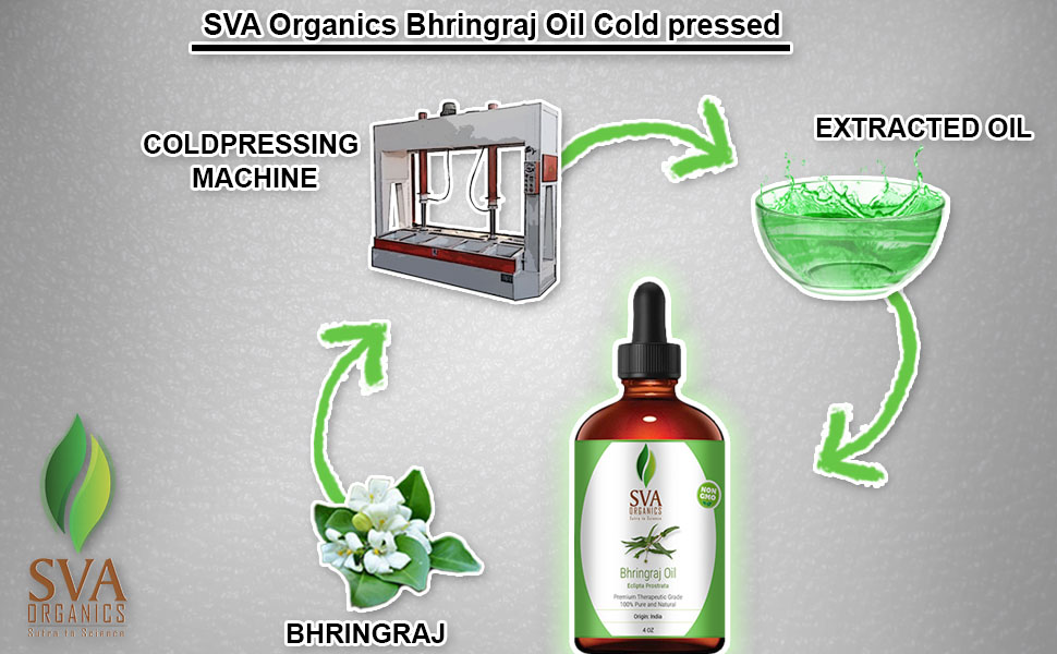 Bhringraj oil for skin care hair care and aromatherapy