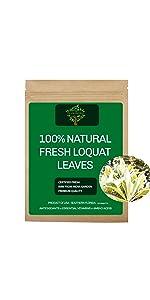 Fresh Loquat Leaves, Fresh Loquat Tea