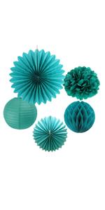 Tissue Paper Pom Poms Paper Fans Honeycomb Balls Kit