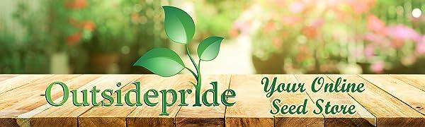 alfalfa vernal outsidepride cover crop seed