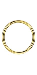 316L Gold Nose Rings Hoop