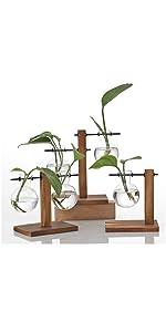 Hydroponic Glass Vase Vintage Desktop Plant Terrarium Planter Bulb Vase Water Planting Propagation
