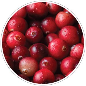 Cranberries are rich in antioxidants