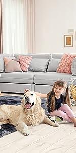 Shaggy Indoor Living Room Home Bedroom Carpet