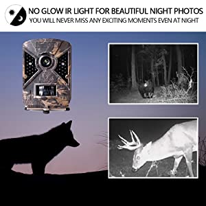 Deer Hunting Game Camera Cam with Night Vision Motion