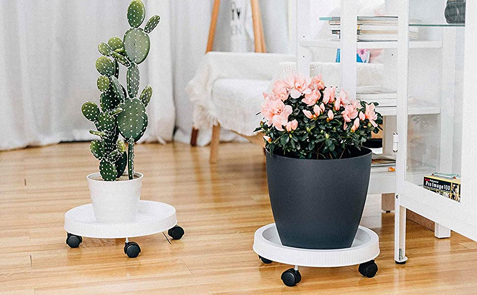plant caddy with wheels