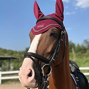 Horse Ear Bonnet-Burgundy