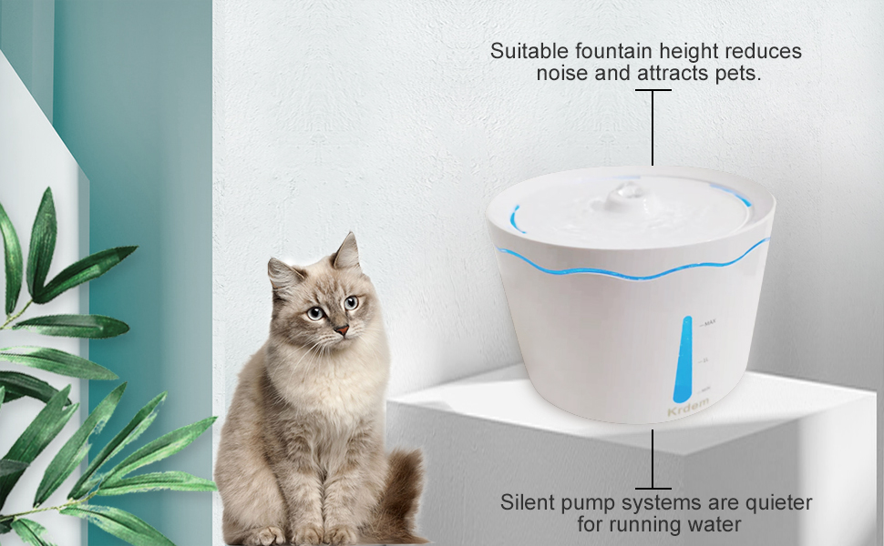 Suitable fountain height reduces noise and attracts pets