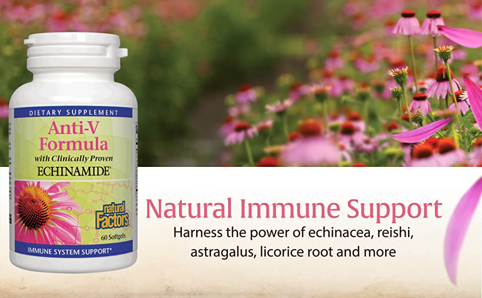 Natural Immune Support; Harness the power of echinacea, reishi, astragalus, licorice root and more