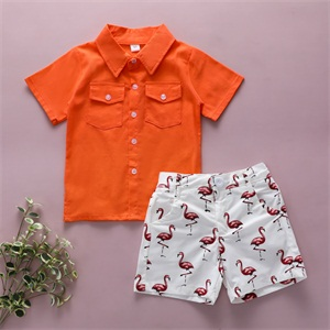Toddler Baby Boys Summer Clothes
