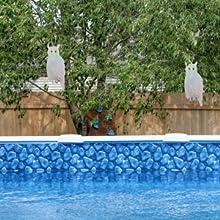 owl bird repellent pool garden tree