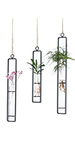 Glass Test Tubes Hanging Vase Planter Different Length Bud Flower Terrarium Container for Home