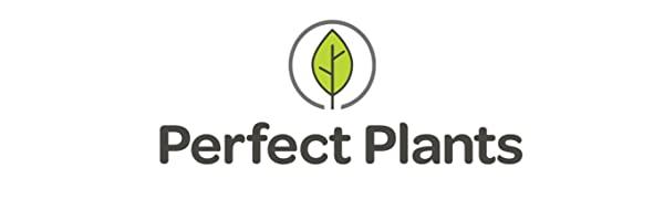 Perfect Plants Nursery, LLC
