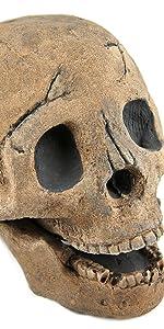 Myard fire skull log 1