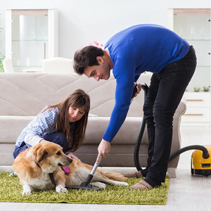 CLEANING PET HAIR FROM THE RUG