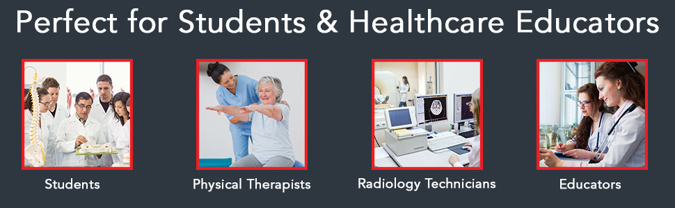 Perfect for Students, Physical Therapists, Radiology Technicians, Educators