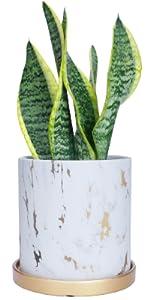 """5.5"""" Marble Plant Pots"""