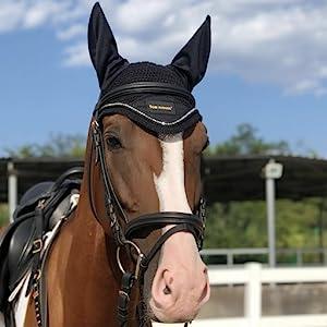 Horse Ear Bonnet-Black
