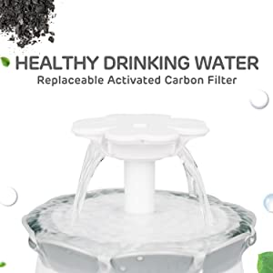 drinking water with filter replacement available