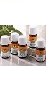 Single Note Essential Oil Trial Pack of 5 Scents by Lotus Touch, 2 ml Bottles
