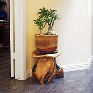 Tree Stump Stool Natural Wood Cedar Live Edge side Table Plant Stand Nightstand