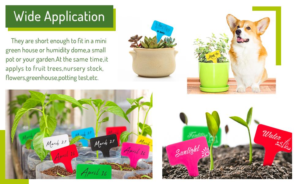 T-Type Plant Labels