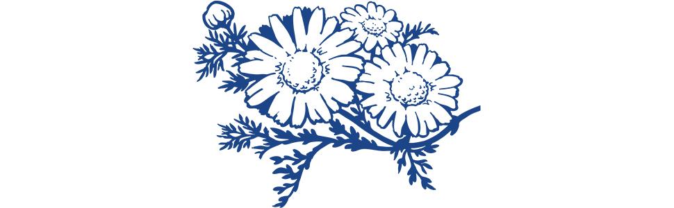motherlove herb natural organic calendula anti fungal bacterial balm salve supplements lactation