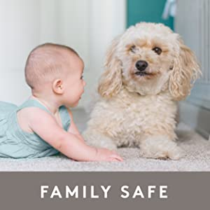 Pet and Family Safe