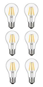 A19 Vintage Edison LED Bulb 6W