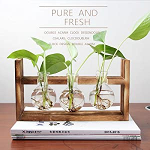 propagation wood plant stand wooden vase planter stand plant rack