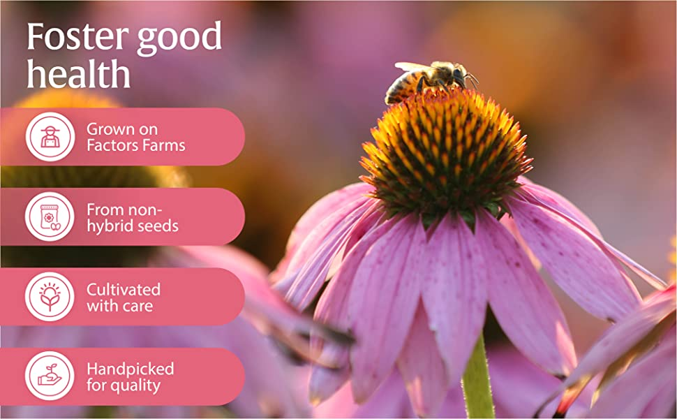 Foster good health; Grown on Factors Farms; From non-hybrid seeds; Cultivated with care