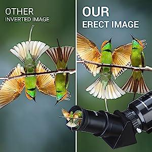 45° Erect-image Diagonal Prism