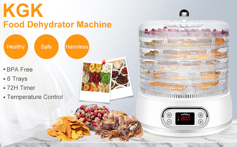 Dehydrator for Food and Jerky Food