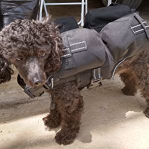 Weighted Dog Vest, Anxiety Vest, Tactical Vest. Aggression Vest