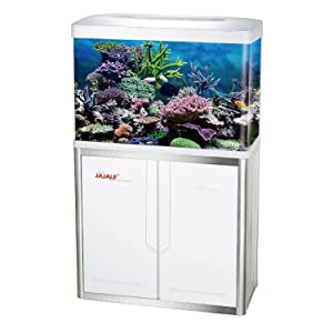 fish tank, 55 gallon, aquarium, tank
