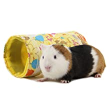 Size of tunnel versus guinea pig
