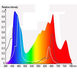 3000w full spectrum design