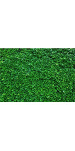 Spring Grass Photography Backdrop Wedding Birthday Party 7x5ft Baby Shower