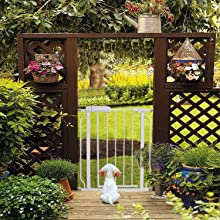 dog gates for outdoor