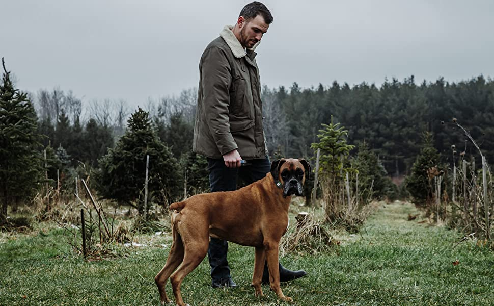 Dog E COLLAR for MEDIUM Dogs