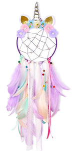 Moon Net Dream Catcher