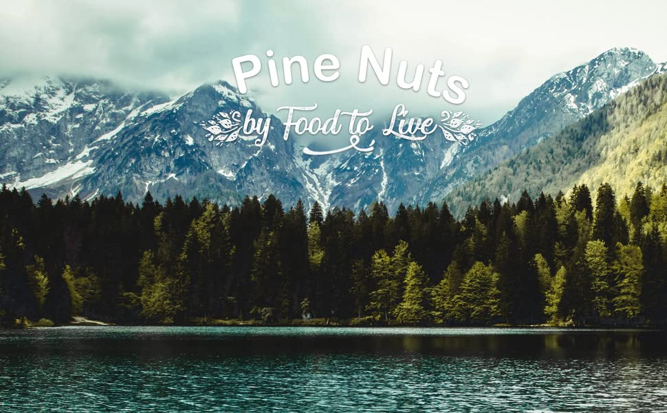 pine nuts, food to live